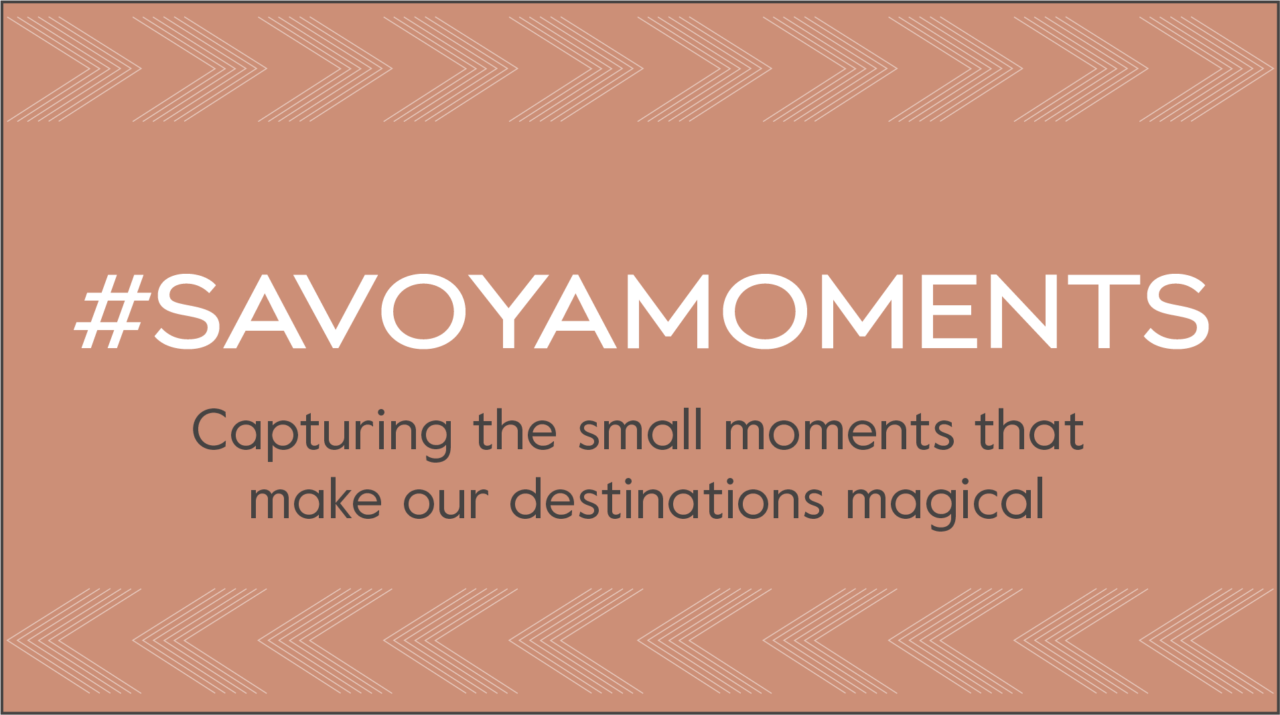 Savoya-Moments